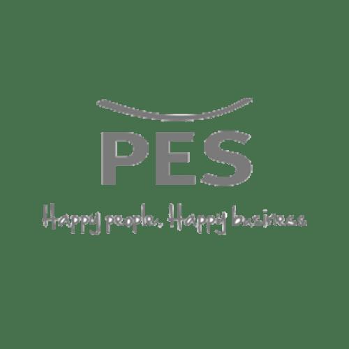 PES logo